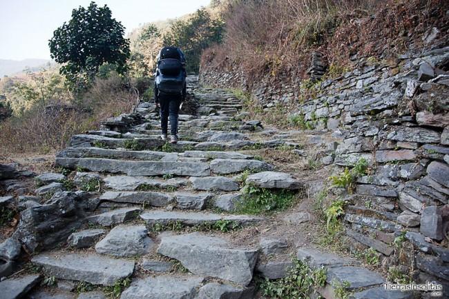 trekking-tikhedhunga-ghorepani-nepal-01