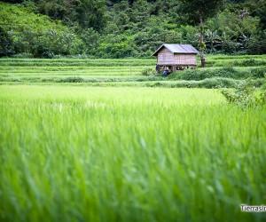 guia de laos
