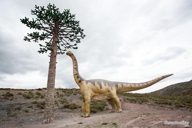 árbol fósil la rioja
