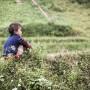 trekking-en-sapa-por-libre-04