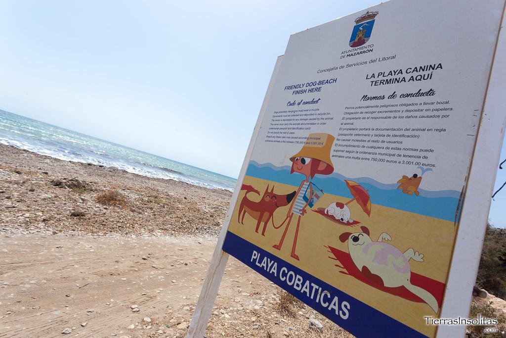 cartel playa canina las covaticas