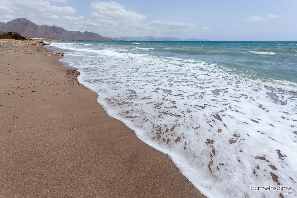playa canina las covaticas