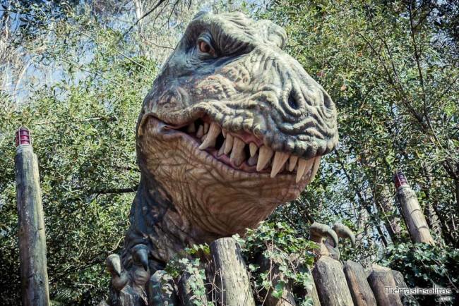valle de los dinosaurios t-rex carranza