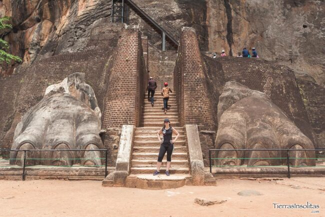 lion's rock sigirilla
