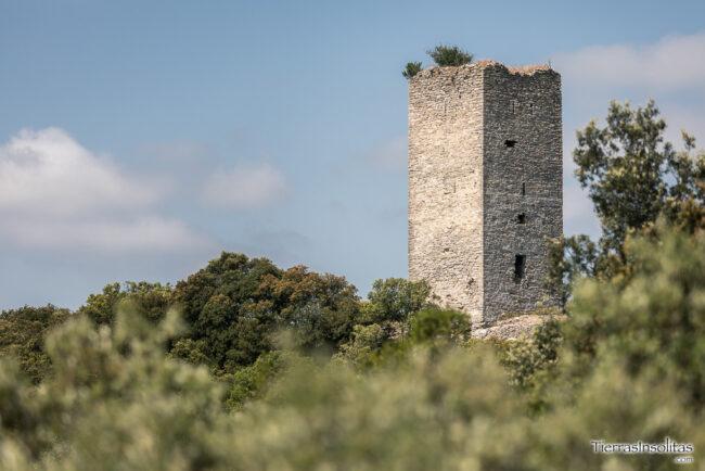 castillo de la puebla de arganzón condado de treviño burgos