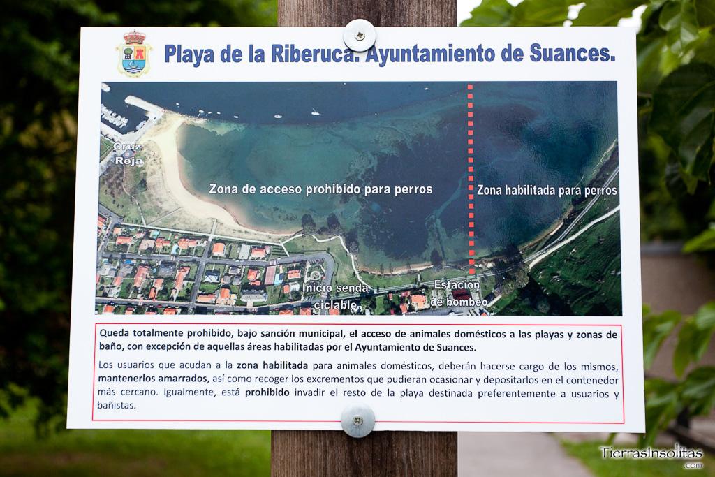 ᐈ Playas Para Perros En Cantabria 2021 Nuevo