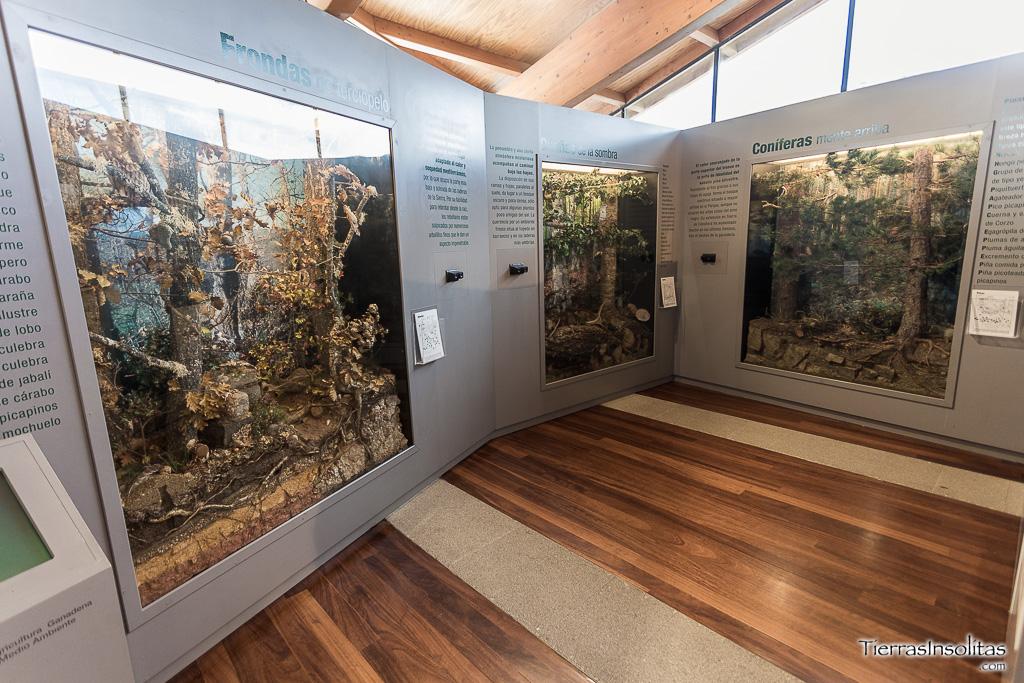 centro interpretación parque natural sierra de cebollera