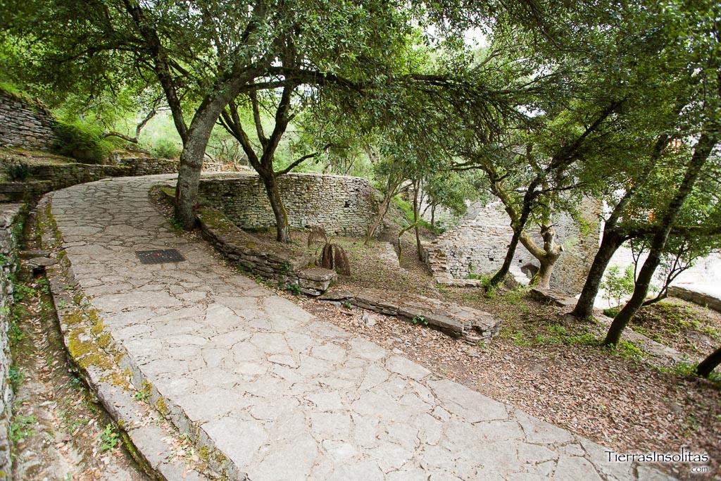 paseo jardín botánico de santa catalina
