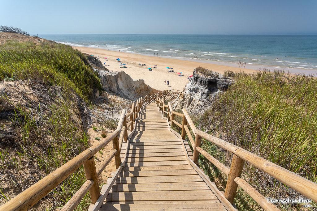 playa cuesta maneli doñana