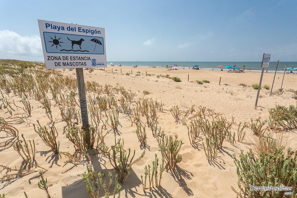 playa del espigón huelva andalucía